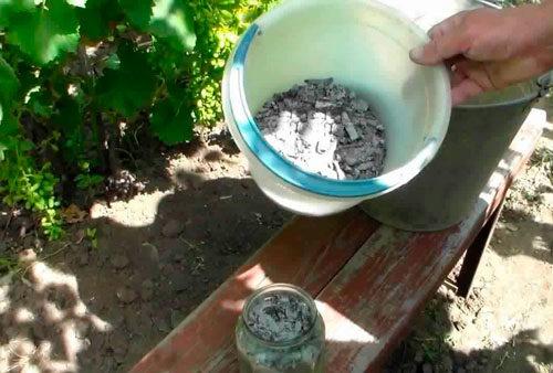 подкормка винограда золой