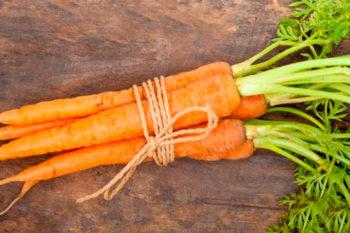 морковная муха, как избавиться