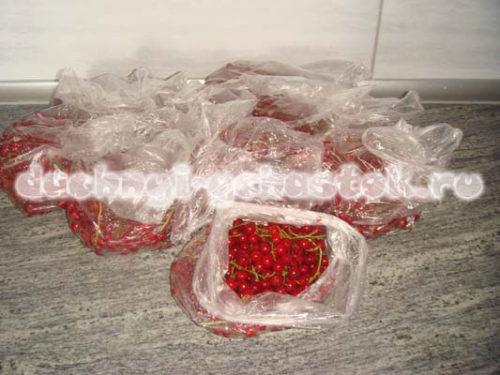 ягоды в пакете