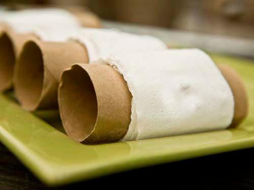 как выращивать семена в туалетной бумаге