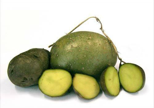 почему картошка зеленеет