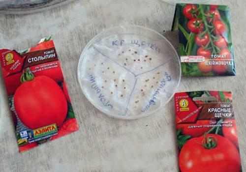 как подготовить самена к посеву