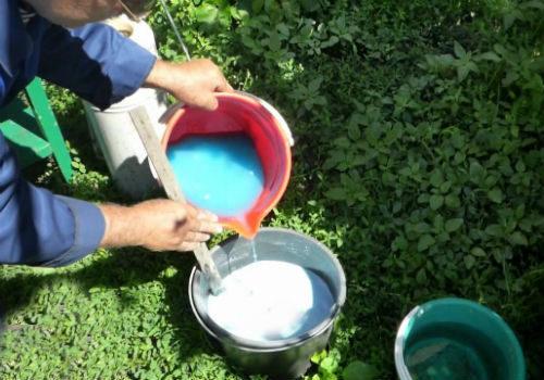 применение бордосской жидкости