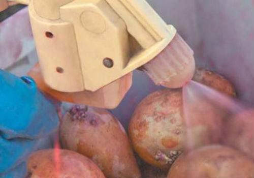 средства для обработки картофеля