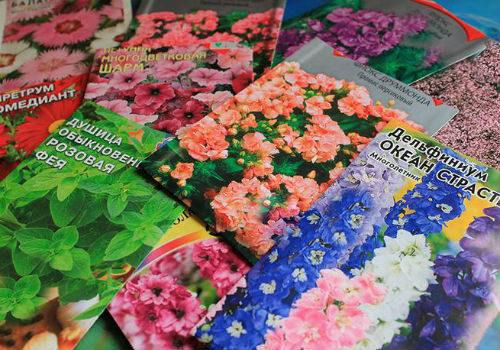 что посадить в феврале из цветов