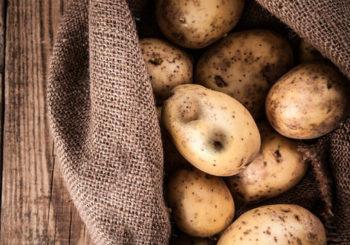 Как бороться с проволочником на картошке
