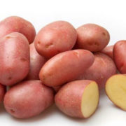 картофель беллороза характеристика