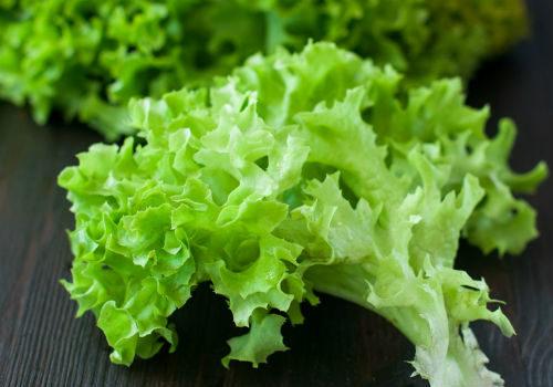 Что делать когда салат горький что делать