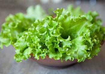 почему листья салата горькие