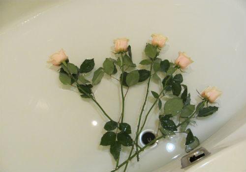 ванны для роз