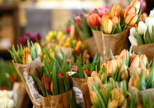 хранение срезанных тюльпанов